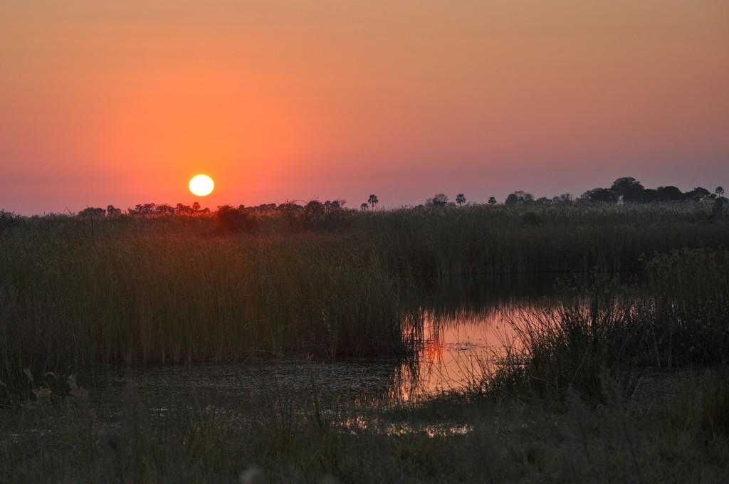Por do sol no Delta do Okavango