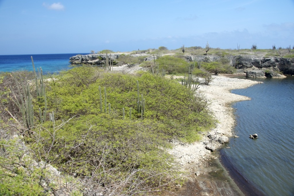 Playa Funchi - Washington Slagbaai National Park - Bonaire